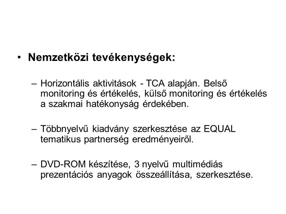 Nemzetközi tevékenységek: –Horizontális aktivitások - TCA alapján.