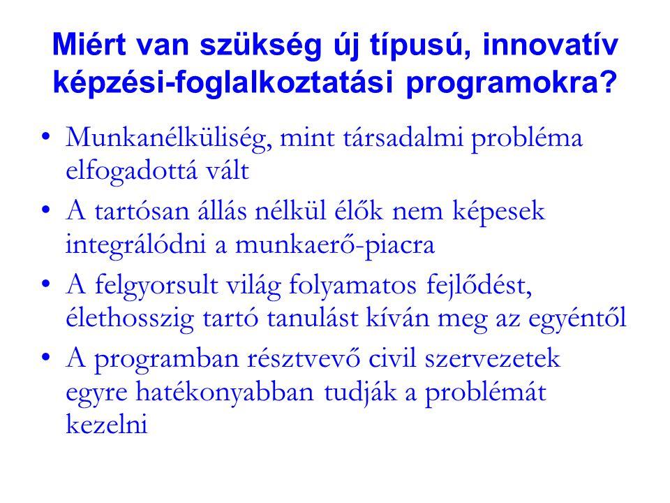 Miért van szükség új típusú, innovatív képzési-foglalkoztatási programokra.