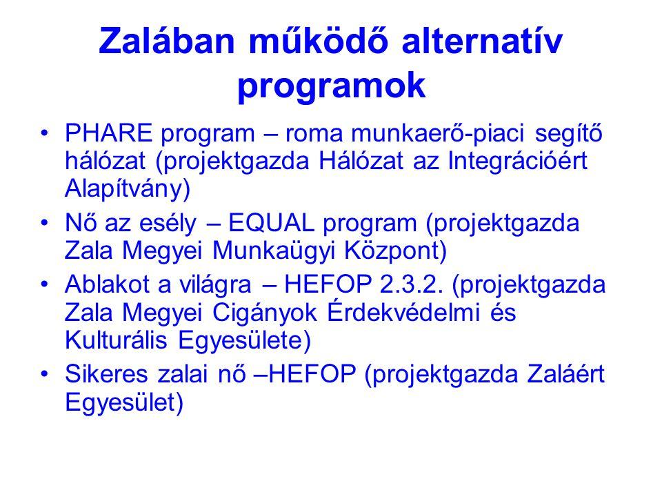 Zalában működő alternatív programok PHARE program – roma munkaerő-piaci segítő hálózat (projektgazda Hálózat az Integrációért Alapítvány) Nő az esély – EQUAL program (projektgazda Zala Megyei Munkaügyi Központ) Ablakot a világra – HEFOP 2.3.2.