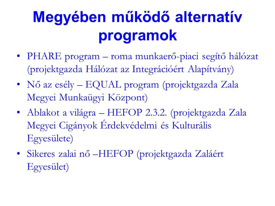 Megyében működő alternatív programok PHARE program – roma munkaerő-piaci segítő hálózat (projektgazda Hálózat az Integrációért Alapítvány) Nő az esély – EQUAL program (projektgazda Zala Megyei Munkaügyi Központ) Ablakot a világra – HEFOP 2.3.2.