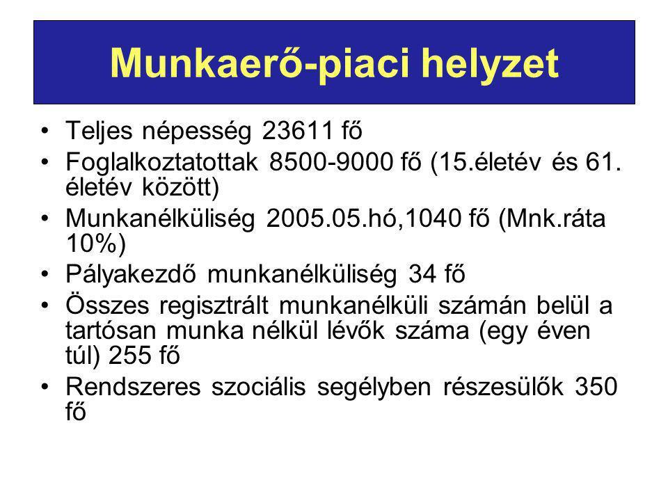 Munkaerő-piaci helyzet Teljes népesség 23611 fő Foglalkoztatottak 8500-9000 fő (15.életév és 61.