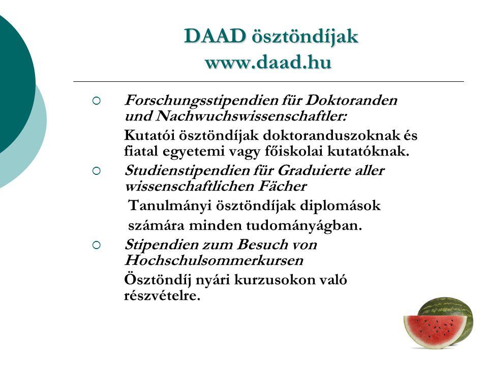 DAAD ösztöndíjak www.daad.hu DAAD ösztöndíjak www.daad.hu  Forschungsstipendien für Doktoranden und Nachwuchswissenschaftler: Kutatói ösztöndíjak doktoranduszoknak és fiatal egyetemi vagy főiskolai kutatóknak.
