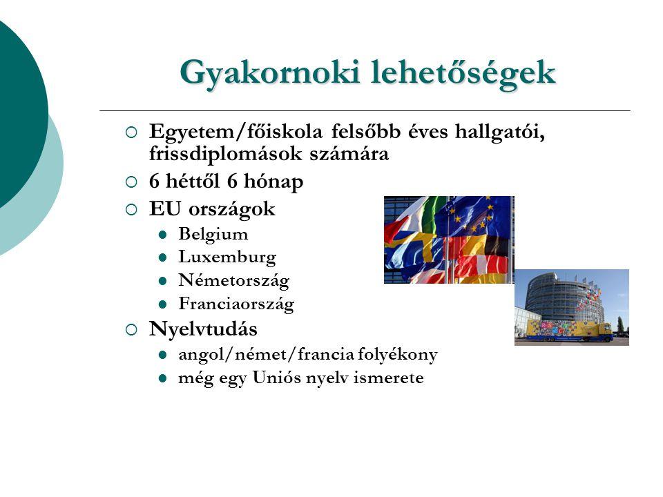 Gyakornoki lehetőségek  Egyetem/főiskola felsőbb éves hallgatói, frissdiplomások számára  6 héttől 6 hónap  EU országok Belgium Luxemburg Németország Franciaország  Nyelvtudás angol/német/francia folyékony még egy Uniós nyelv ismerete