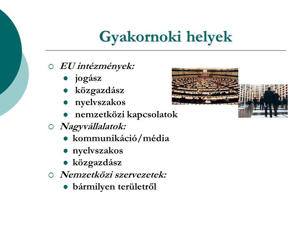 Gyakornoki helyek  EU intézmények: jogász közgazdász nyelvszakos nemzetközi kapcsolatok  Nagyvállalatok: kommunikáció/média nyelvszakos közgazdász  Nemzetközi szervezetek: bármilyen területről