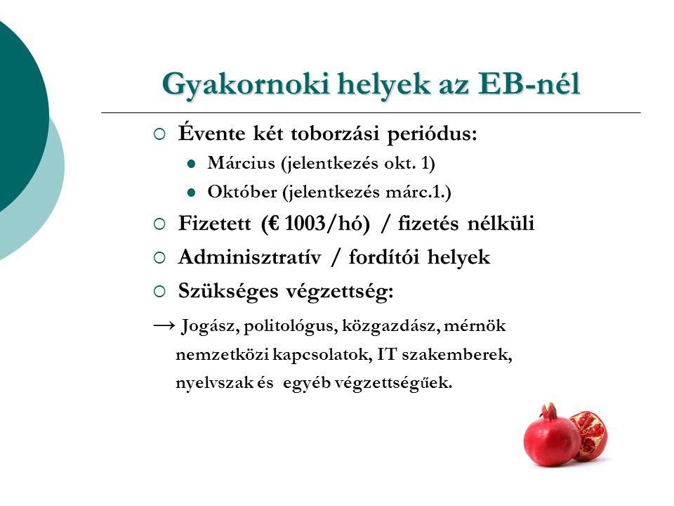 Gyakornoki helyek az EB-nél  Évente két toborzási periódus: Március (jelentkezés okt.