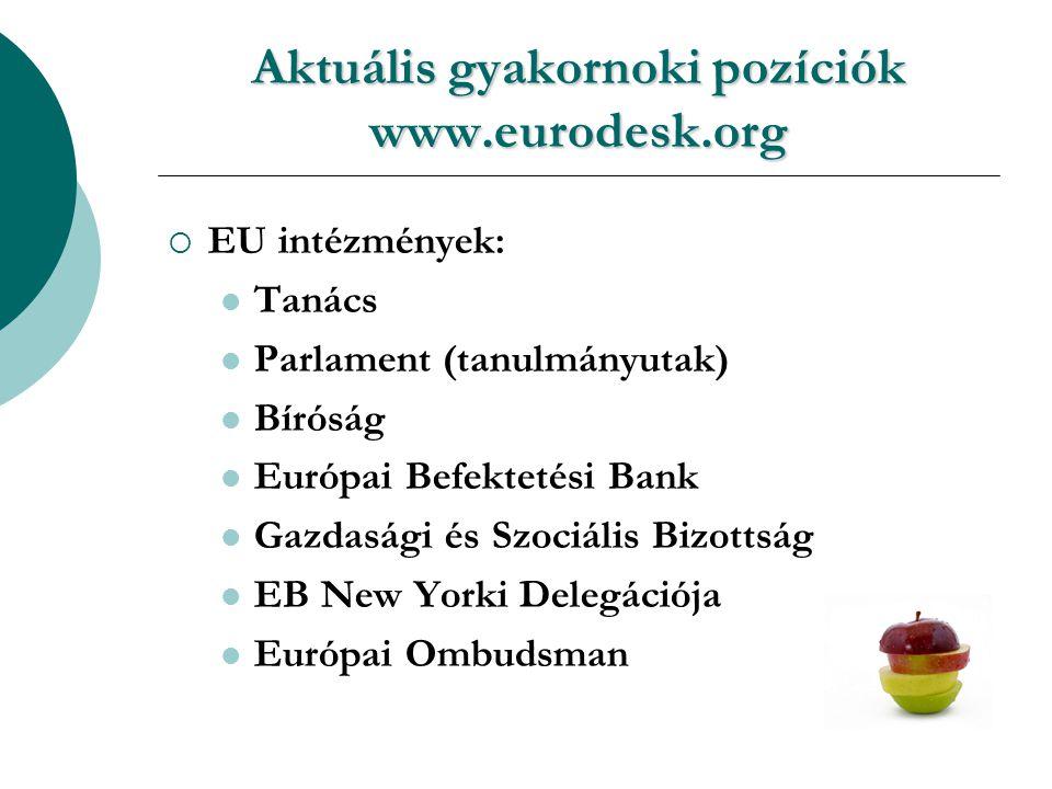 Aktuális gyakornoki pozíciók www.eurodesk.org  EU intézmények: Tanács Parlament (tanulmányutak) Bíróság Európai Befektetési Bank Gazdasági és Szociális Bizottság EB New Yorki Delegációja Európai Ombudsman