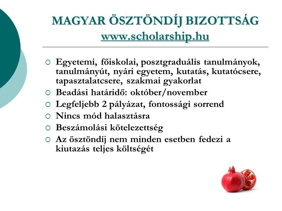 MAGYAR ÖSZTÖNDÍJ BIZOTTSÁG www.scholarship.hu www.scholarship.hu  Egyetemi, főiskolai, posztgraduális tanulmányok, tanulmányút, nyári egyetem, kutatás, kutatócsere, tapasztalatcsere, szakmai gyakorlat  Beadási határidő: október/november  Legfeljebb 2 pályázat, fontossági sorrend  Nincs mód halasztásra  Beszámolási kötelezettség  Az ösztöndíj nem minden esetben fedezi a kiutazás teljes költségét