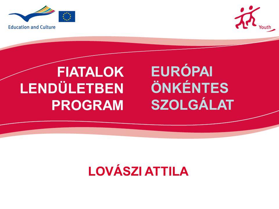 12 Támogatás mértéke Küldő szervezet: 480 euró –felkészítés –kapcsolattartás Fogadó szervezet: 440 euró / hó –lakhatás, ellátás, nyelvoktatás, mentor