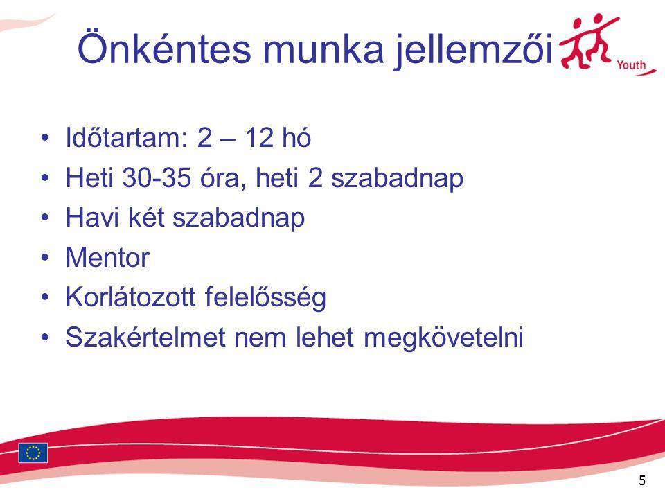 6 Projektek témái Művészet és kultúra (pl.: fesztiválszervezés) Környezetvédelem (pl.: parkgondozás) Média (pl.: rádiózás) Gyerekekkel való foglalkozás (pl.