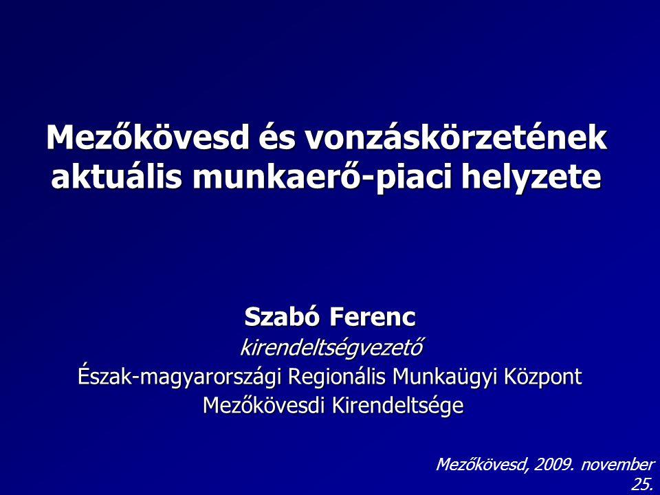 Mezőkövesd és vonzáskörzetének aktuális munkaerő-piaci helyzete Szabó Ferenc kirendeltségvezető Észak-magyarországi Regionális Munkaügyi Központ Mezőkövesdi Kirendeltsége Mezőkövesdi Kirendeltsége Mezőkövesd, 2009.