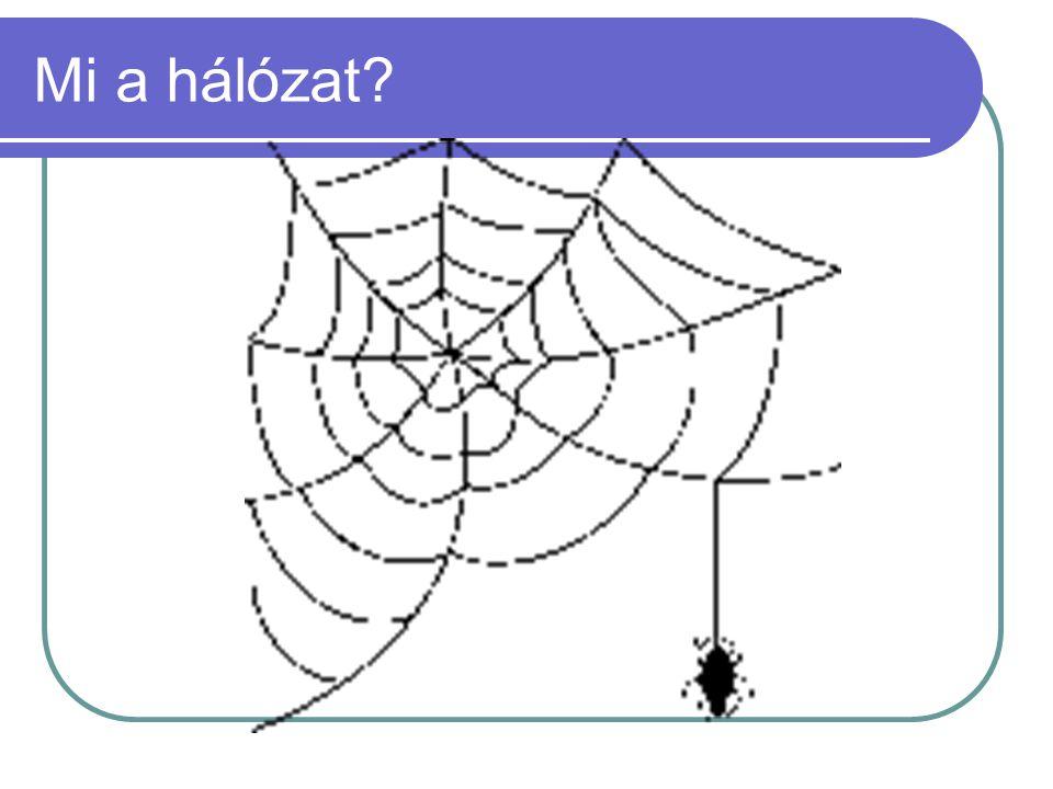 A pókhálón túl..