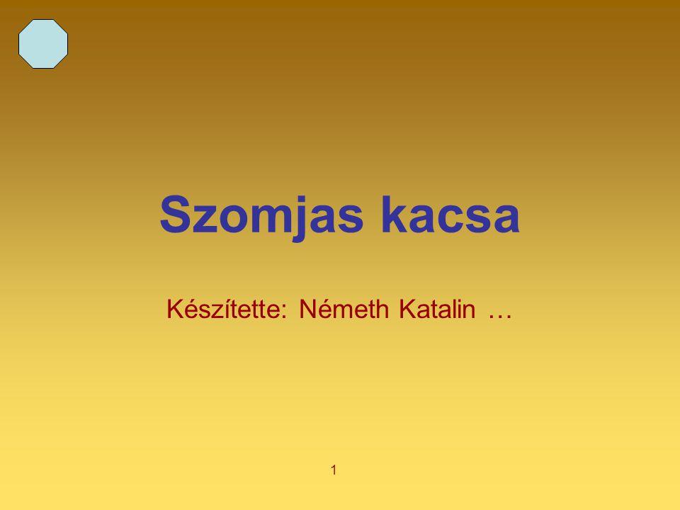 1 Szomjas kacsa Készítette: Németh Katalin …