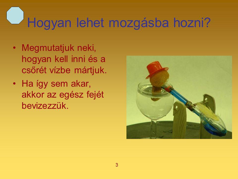 4 A kacsa felépítése I.A kacsa egy hosszú üvegcsőhöz kapcsolódó két üveggömbből épül fel.