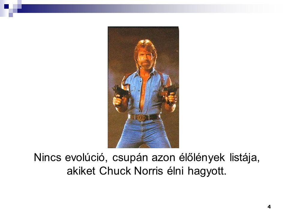 4 Nincs evolúció, csupán azon élőlények listája, akiket Chuck Norris élni hagyott.