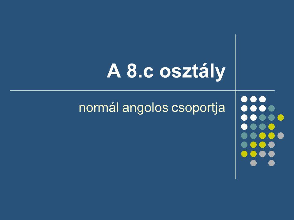 A 8.c osztály normál angolos csoportja
