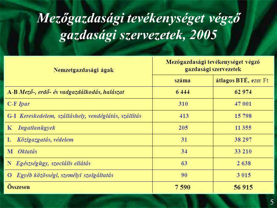 Mezőgazdasági tevékenységet végző gazdasági szervezetek, 2005 Nemzetgazdasági ágak Mezőgazdasági tevékenységet végző gazdasági szervezetek számaátlago