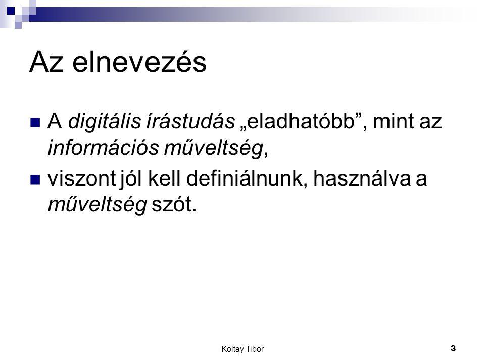 Koltay Tibor4 A felhasználóképzés A felhasználóképzés hagyományos modelljei jó alapul szolgálnak, viszont túl kell lépnünk rajtuk.