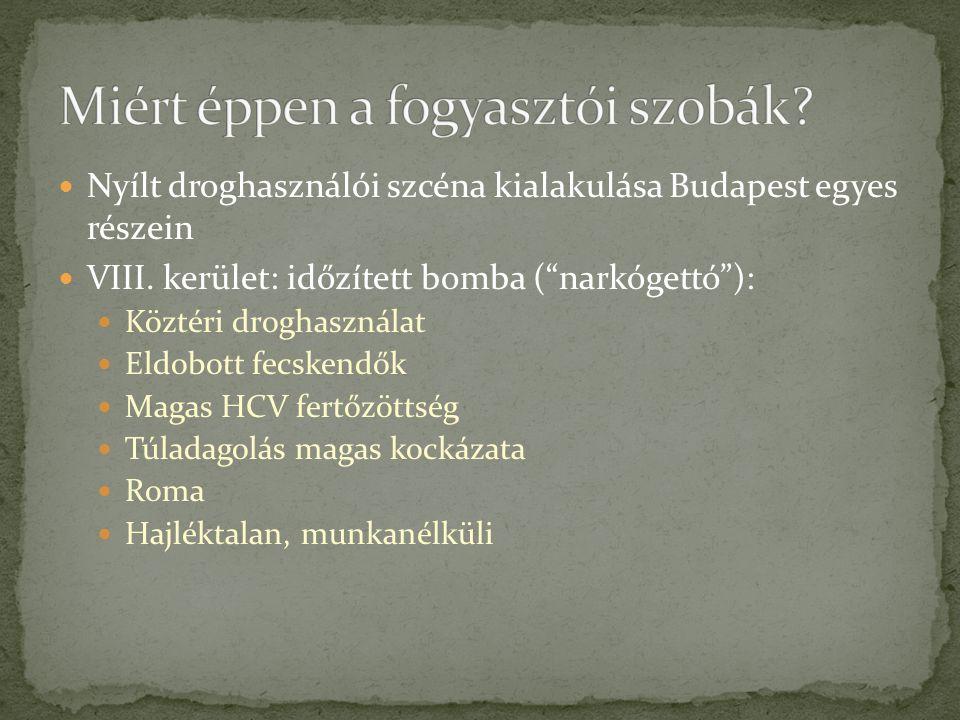 """Nyílt droghasználói szcéna kialakulása Budapest egyes részein VIII. kerület: időzített bomba (""""narkógettó""""): Köztéri droghasználat Eldobott fecskendők"""