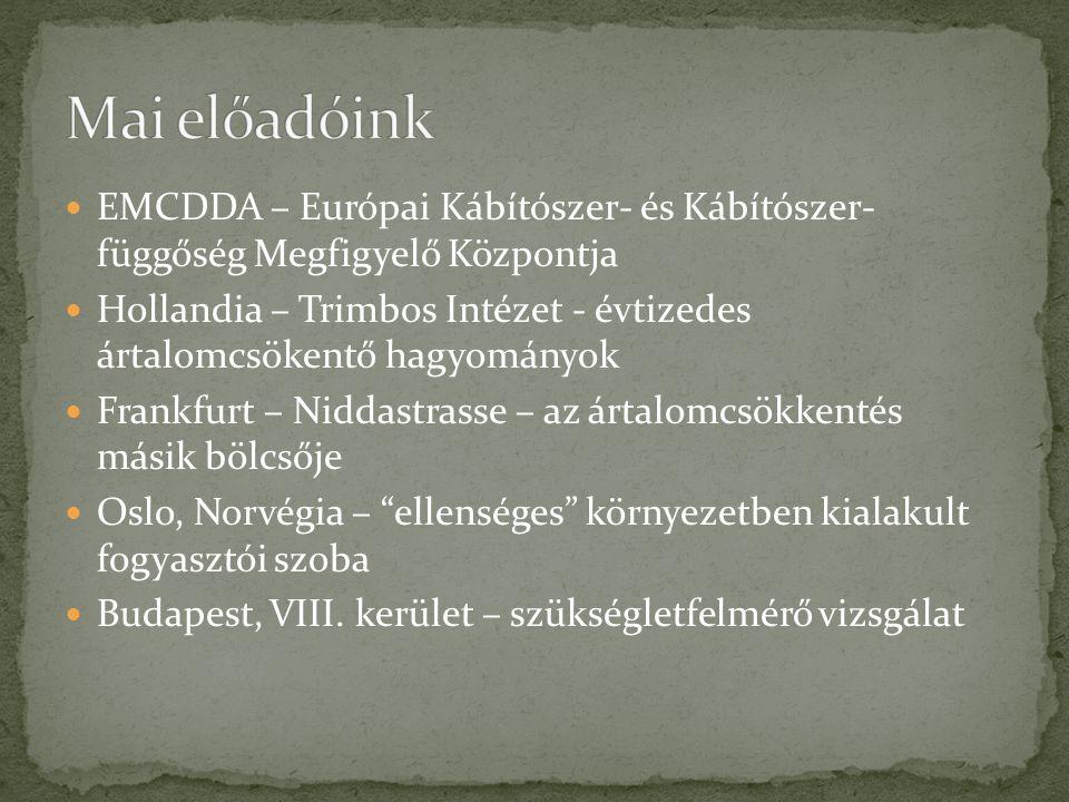 EMCDDA – Európai Kábítószer- és Kábítószer- függőség Megfigyelő Központja Hollandia – Trimbos Intézet - évtizedes ártalomcsökentő hagyományok Frankfurt – Niddastrasse – az ártalomcsökkentés másik bölcsője Oslo, Norvégia – ellenséges környezetben kialakult fogyasztói szoba Budapest, VIII.