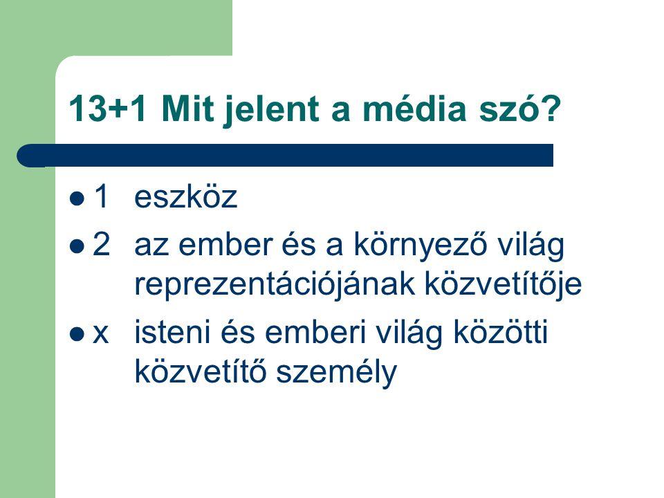13+1 Mit jelent a média szó.