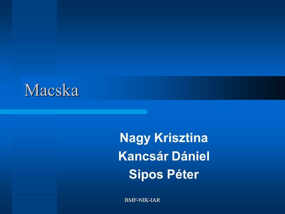 BMF-NIK-IAR Macska Nagy Krisztina Kancsár Dániel Sipos Péter