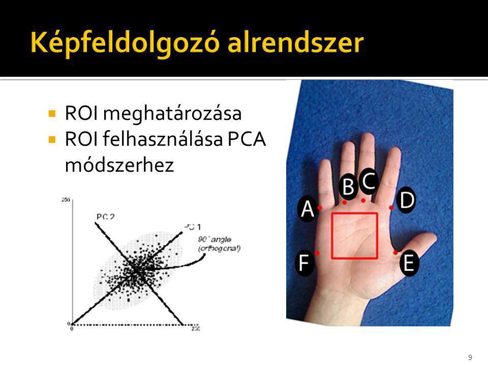  ROI meghatározása  ROI felhasználása PCA módszerhez 9