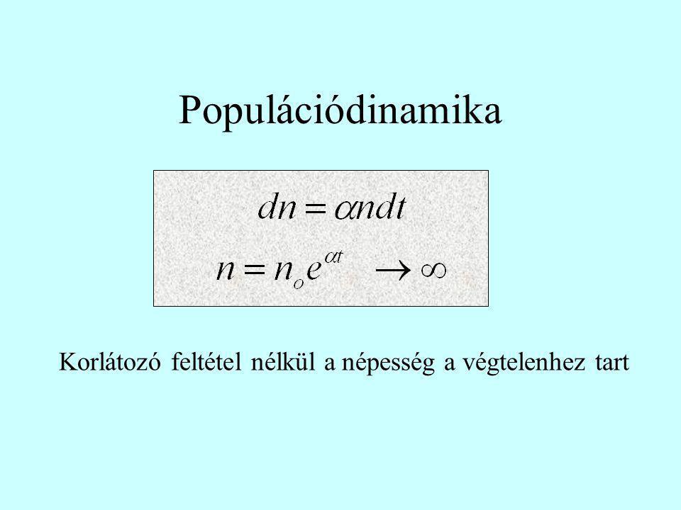 Populációdinamika Korlátozó feltétel nélkül a népesség a végtelenhez tart