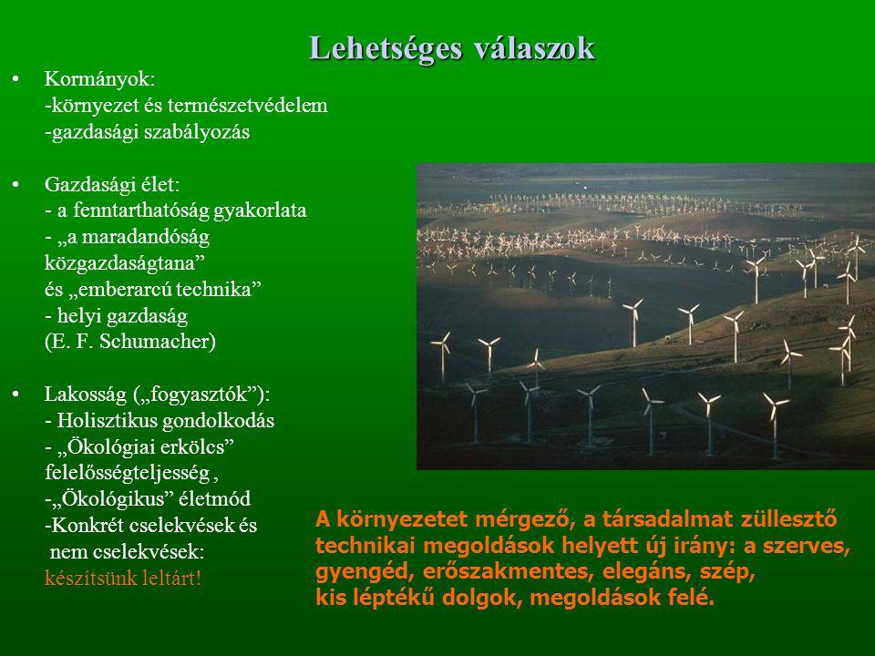 """Lehetséges válaszok Kormányok: -környezet és természetvédelem -gazdasági szabályozás Gazdasági élet: - a fenntarthatóság gyakorlata - """"a maradandóság közgazdaságtana és """"emberarcú technika - helyi gazdaság (E."""