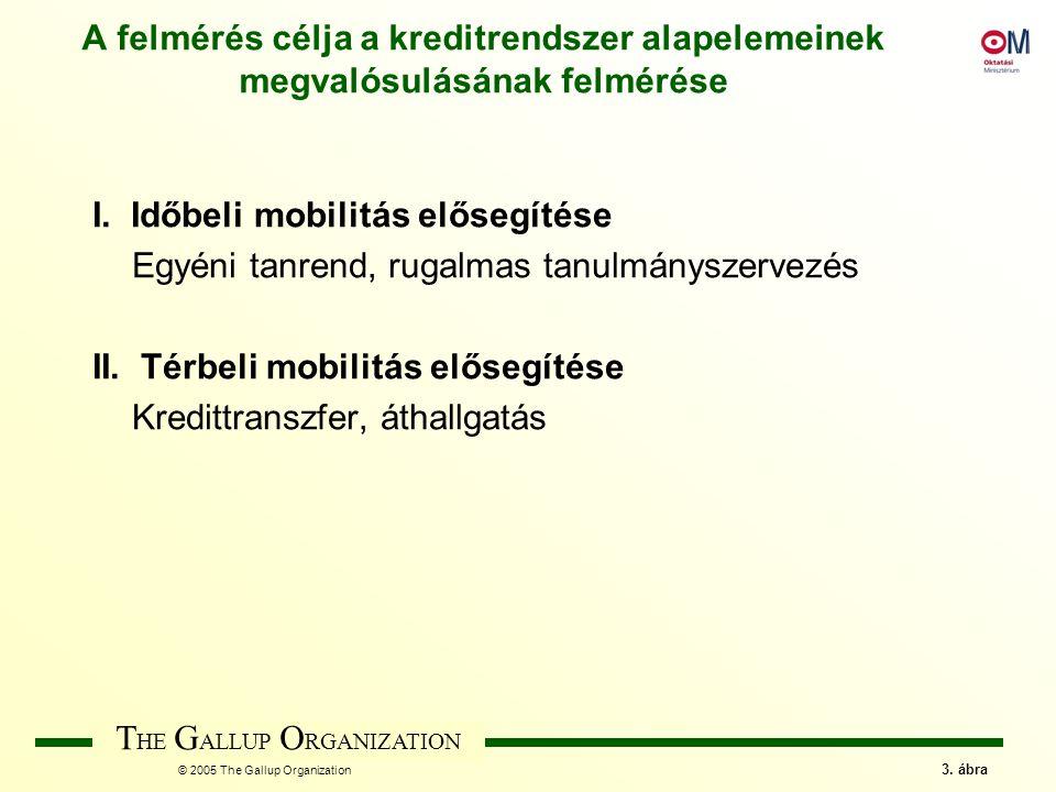 T HE G ALLUP O RGANIZATION © 2005 The Gallup Organization 44.