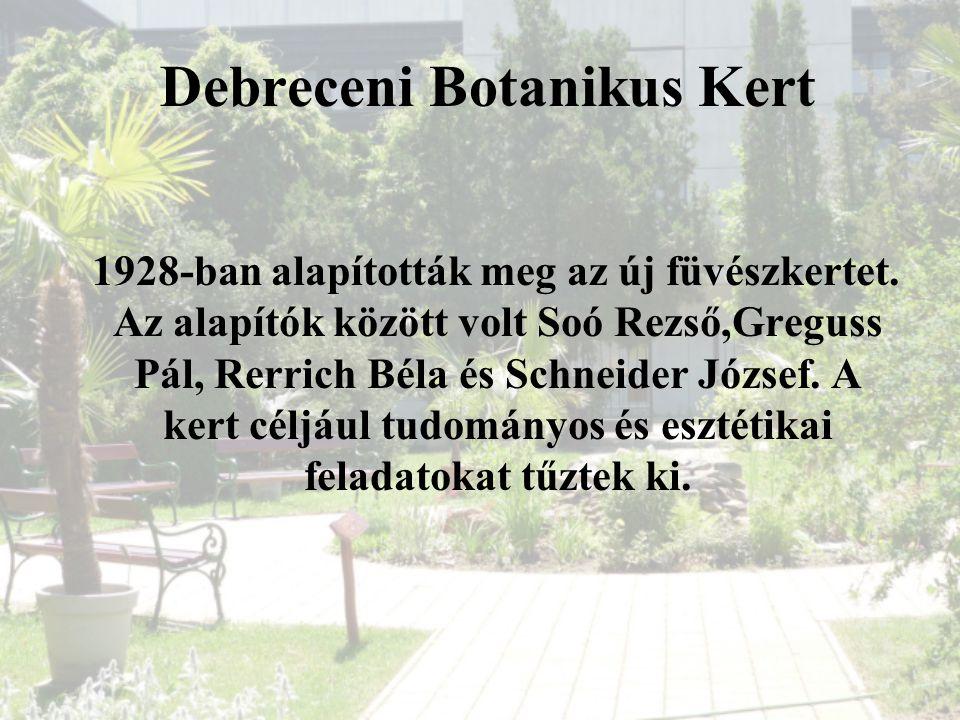 Debreceni Botanikus Kert 1928-ban alapították meg az új füvészkertet. Az alapítók között volt Soó Rezső,Greguss Pál, Rerrich Béla és Schneider József.