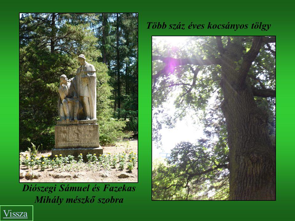 Diószegi Sámuel és Fazekas Mihály mészkő szobra Több száz éves kocsányos tölgy Vissza