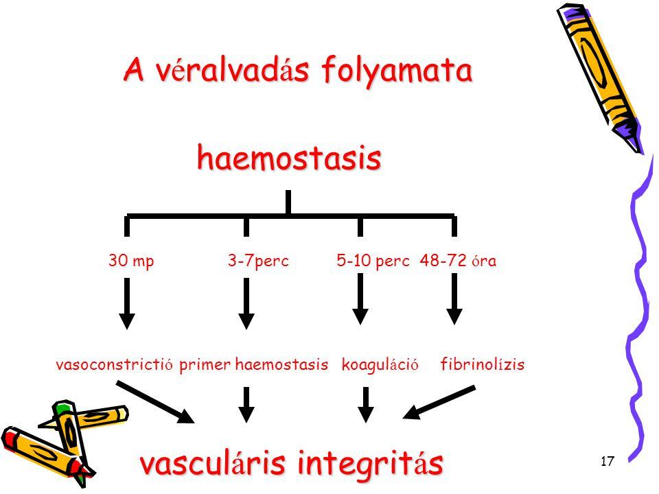 17 A v é ralvad á s folyamata haemostasis 30 mp5-10 perc3-7perc48-72 ó ra vasoconstricti ó primer haemostasiskoagul á ci ó fibrinol í zis vascul á ris integrit á s