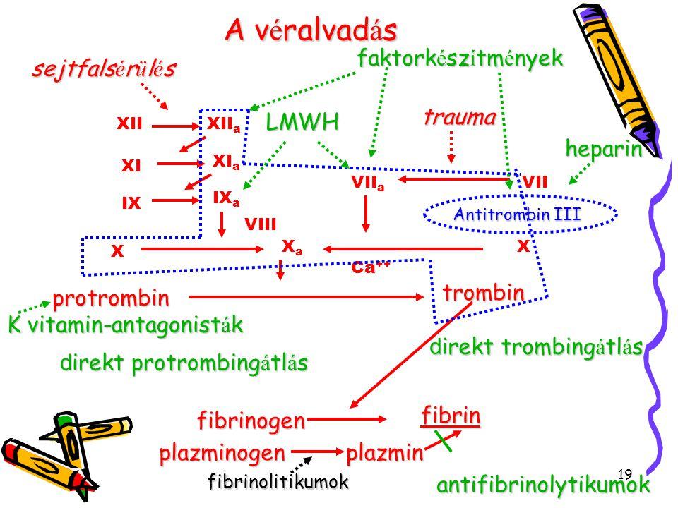 19 Av é ralvad á s A v é ralvad á sfibrinogen fibrin trombin protrombin Ca ++ XaXa XIIXII a XI XI a IX IX a X X VIII VII a VII sejtfals é r ü l é s trauma Antitrombin III heparin LMWH K vitamin-antagonist á k plazminogenplazmin fibrinolitikumokantifibrinolytikumok faktork é sz í tm é nyek d irekt trombing á tl á s d irekt protrombing á tl á s