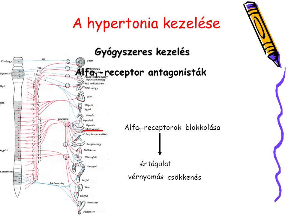 A hypertonia kezelése Gyógyszeres kezelés Alfa 1 -receptor antagonisták Alfa 1 -receptorok izgatása érszűkület, vérnyomás emelkedés blokkolása értágul