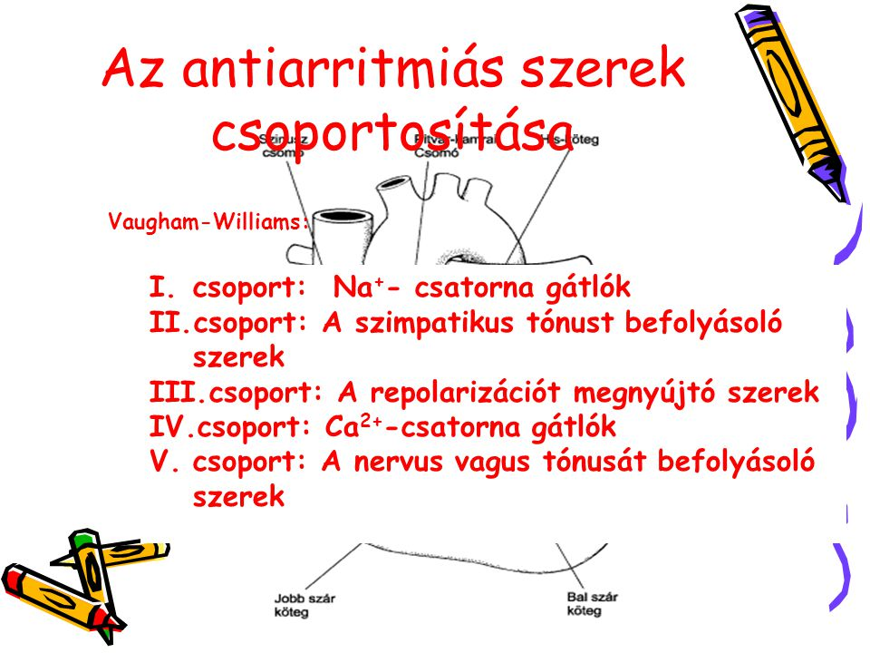 Az antiarritmiás szerek csoportosítása Vaugham-Williams: I.csoport: Na + - csatorna gátlók II.csoport: A szimpatikus tónust befolyásoló szerek III.csoport: A repolarizációt megnyújtó szerek IV.csoport: Ca 2+ -csatorna gátlók V.csoport: A nervus vagus tónusát befolyásoló szerek