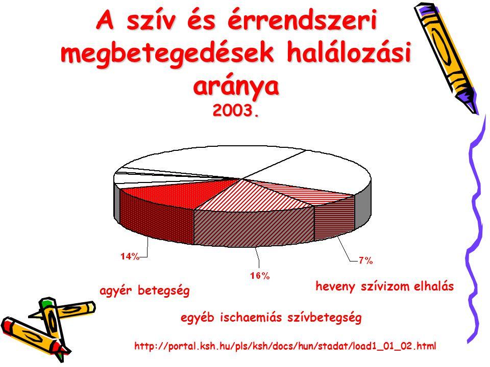 A szív és érrendszeri megbetegedések halálozási aránya 2003. agyér betegség egyéb ischaemiás szívbetegség heveny szívizom elhalás http://portal.ksh.hu