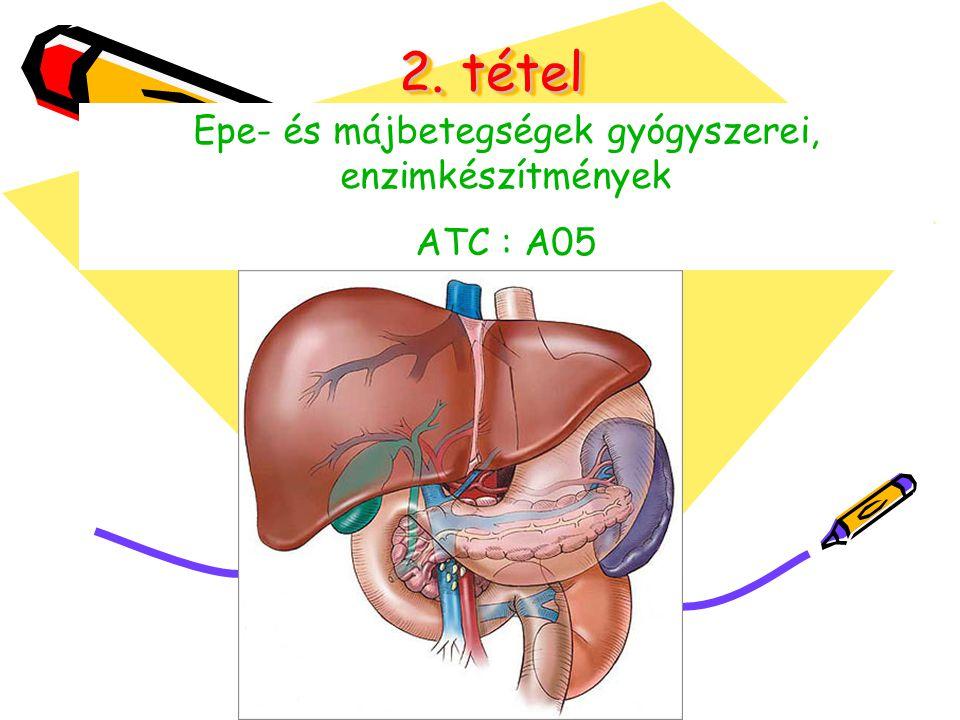 2. tétel Epe- és májbetegségek gyógyszerei, enzimkészítmények ATC : A05