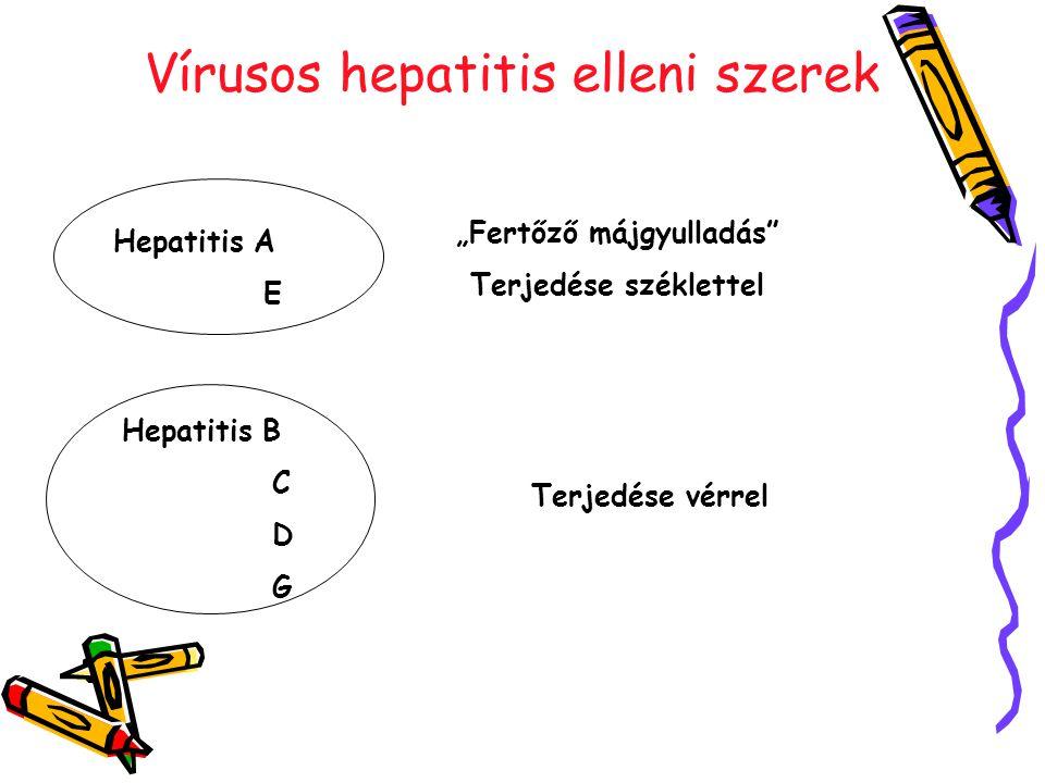 """Vírusos hepatitis elleni szerek Hepatitis A E Hepatitis B C D G """"Fertőző májgyulladás Terjedése széklettel Terjedése vérrel"""