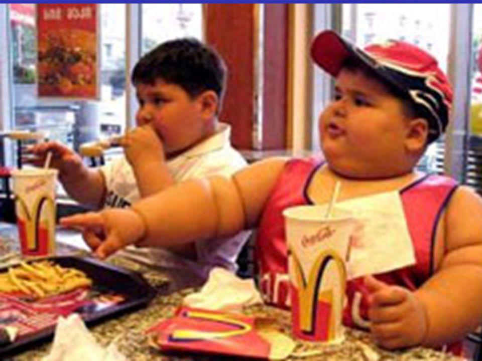 """Témakör: Az elhízás veszélyei Az elhízás veszélyeiCím: Iskolám tanulóinak táplálkozási szokásai """" Egyél, hogy élj, de ne azért élj hogy egyél (Ceaciliws Balbus) Jelige: Dodó 252"""