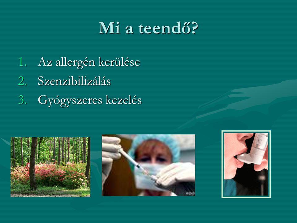 Mi a teendő 1.Az allergén kerülése 2.Szenzibilizálás 3.Gyógyszeres kezelés