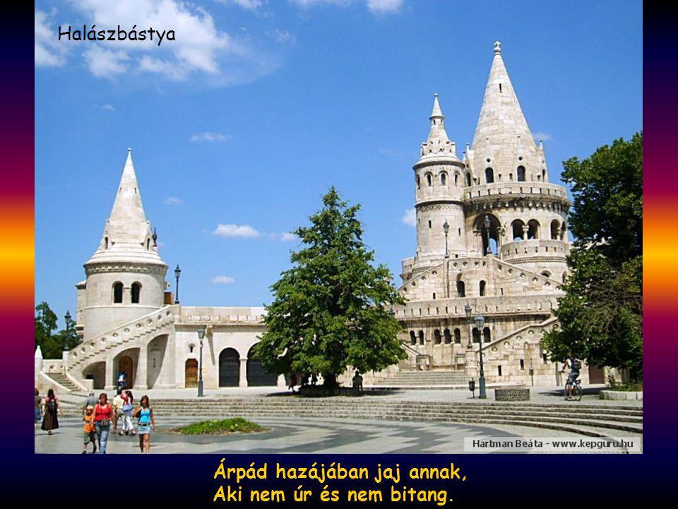 Dunának, Oltnak egy a hangja, Morajos, halk, halotti hang. Debrecen
