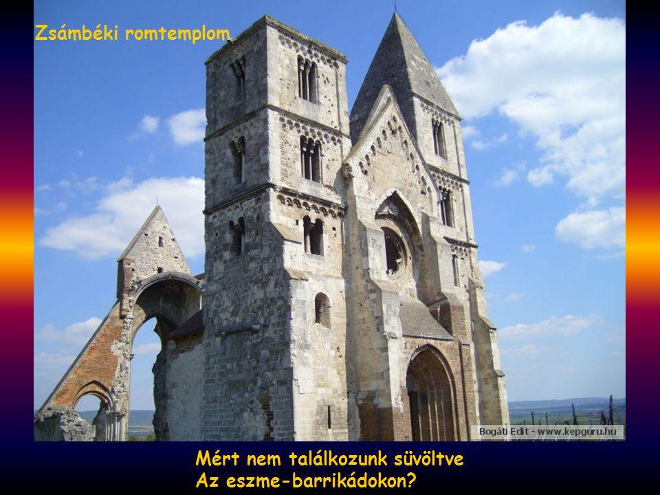 Hiszen gyalázatunk, keservünk Már ezer év óta rokon. Sopron