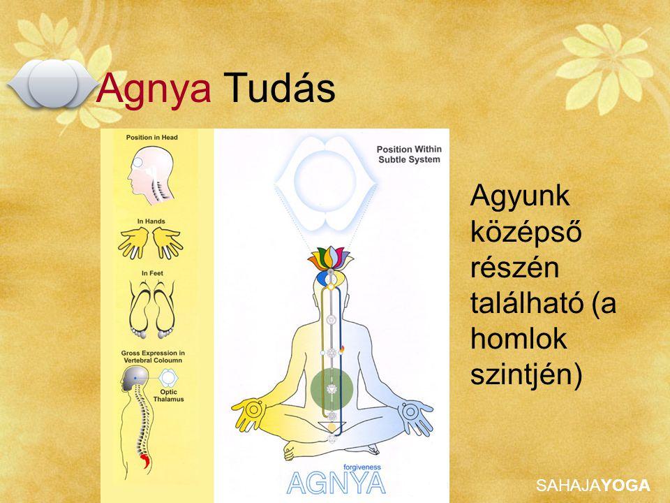 SAHAJAYOGA Agyunk középső részén található (a homlok szintjén) Agnya Tudás