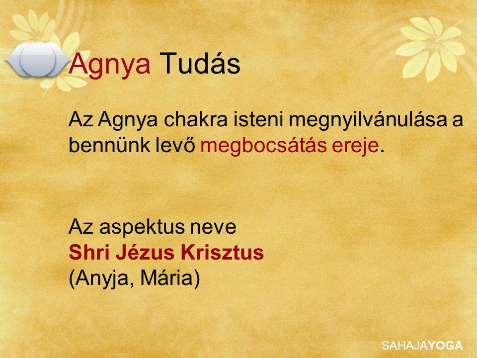 SAHAJAYOGA Az aspektus neve Shri Jézus Krisztus (Anyja, Mária) Az Agnya chakra isteni megnyilvánulása a bennünk levő megbocsátás ereje. Agnya Tudás