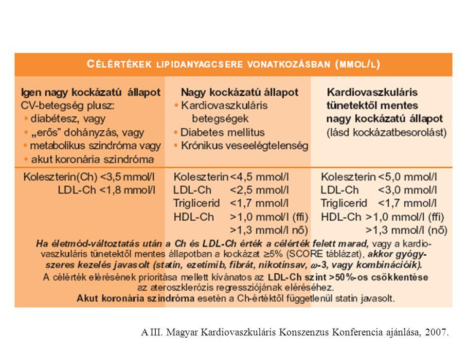 A III. Magyar Kardiovaszkuláris Konszenzus Konferencia ajánlása, 2007.