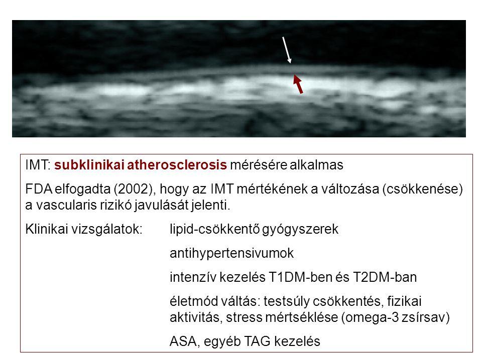 IMT: subklinikai atherosclerosis mérésére alkalmas FDA elfogadta (2002), hogy az IMT mértékének a változása (csökkenése) a vascularis rizikó javulását