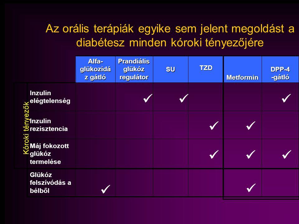 Máj fokozott glükóz termelése Prandiális glükóz regulátor Inzulin rezisztencia Inzulin elégtelenség DPP-4 -gátló MetforminTZDSU Alfa- glükozidá z gátló Kóroki tényezők Glükóz felszívódás a bélből Az orális terápiák egyike sem jelent megoldást a diabétesz minden kóroki tényezőjére