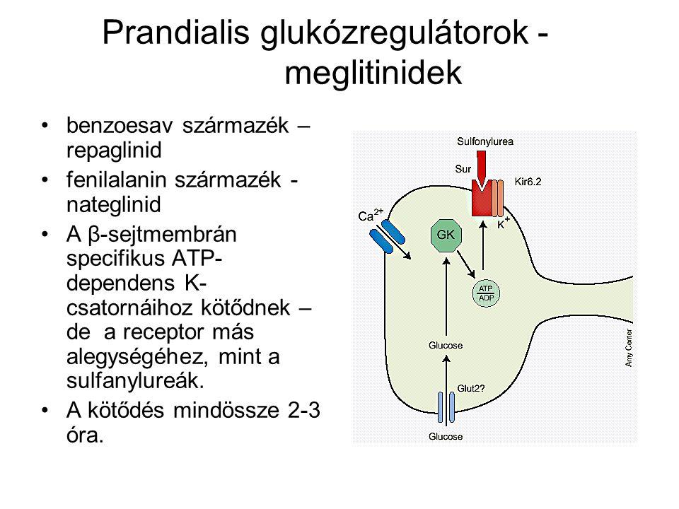  -glukozidáz-gátlók acarbose, miglitol, vogbilose kompetive gátolja a vékonybélben lévő  - glukozidáz enzimet, ezáltal gátolva az oligosacharidok bomlását GLP-1 szintet emeli -  sejtekre trophikus hatású elhízott diabeteses betegeknél választható, ahol elsősorban a postprandialis vércukorszint emelkedés észlelhető – éhgyomri érték ≤ 7, postprandiális emelkedés > 2 mmol/l