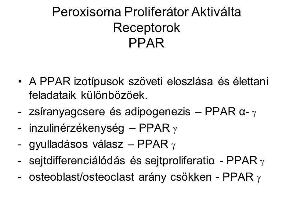 Thiazolidindionok –PPAR-  -agonisták Főhatásuk a zsírsejtekben lévő PPAR gamma receptor stimulálásán keresztül valósul meg.