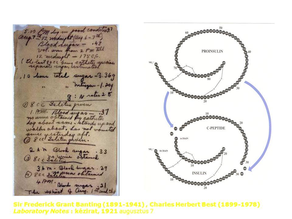 Sir Frederick Grant Banting (1891-1941), Charles Herbert Best (1899-1978) Laboratory Notes : kézirat, 1921 augusztus 7